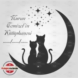 K 34 Ayın Üzerindeki Kediler